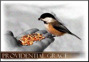 providentialgrace