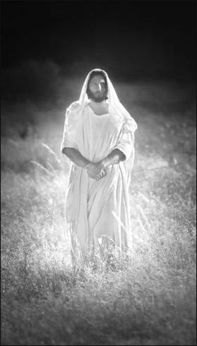 Christ Peace